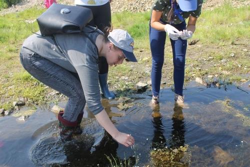 Умные каникулы. Школьники Чесменского района провели неделю с пользой для ума, науки и Варненского муниципалитета