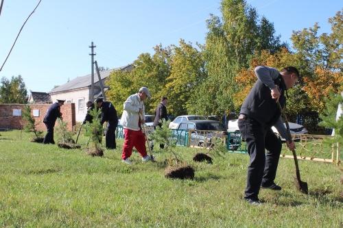 Вечная память… Чесменские полицейские приняли участие во Всероссийской акции «Лес Победы»