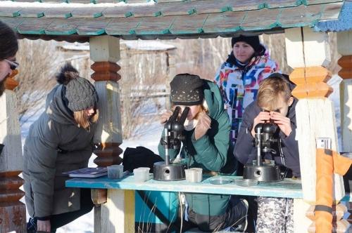 В Чёрном бору живут «Двенадцать месяцев». Участники туристской программы «Чесменские каникулы» нашли под снегом… зелёную траву