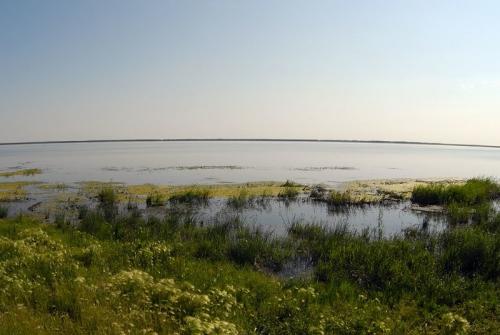 Живая мёртвая вода. Символом Чесменского района признано Горько-солёное озеро